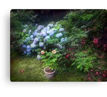 Summer Soltice Canvas Print