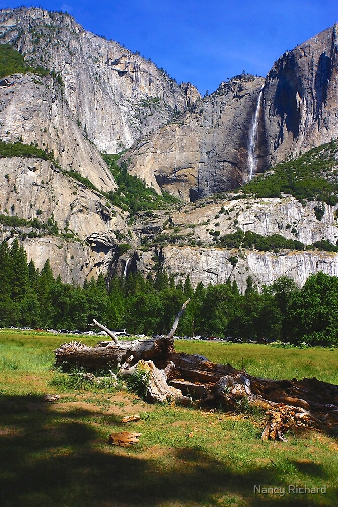 Upper and Lower Yosemite falls by Nancy Richard