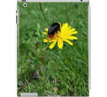Bee on yellow flower iPad Case/Skin