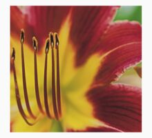 Day Lily (macro) One Piece - Short Sleeve