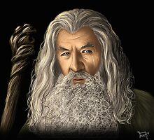 Gandalf the Grey by tohuwabohus