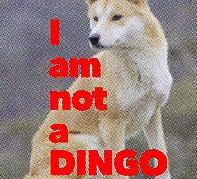 Tom Wheeler is a Dingo by redandy