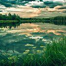 Fire In Water (iPhone wallet) by Matti Ollikainen