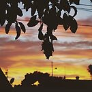 Summer afternoons  by Santamariaa