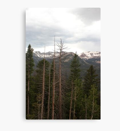 Rocky Mountains 3 Canvas Print