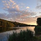 Another beautiful evening at the lake by vigor