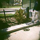 Squirrel in Washington by Ashley Marie