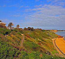 Sandringham Beach - Victoria - Australia by bayside2