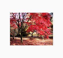 Japanese Maples in Autumn Unisex T-Shirt