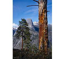 Yosemite Rugged Beauty Photographic Print