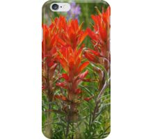 Indian Paint Brush iPhone Case/Skin