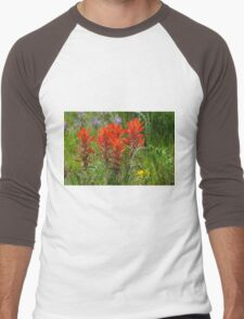 Indian Paint Brush Men's Baseball ¾ T-Shirt