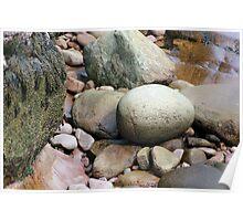 Acadia Shoreline Rocks Poster