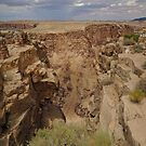 Little Colorado River Gorge  by John  Kapusta