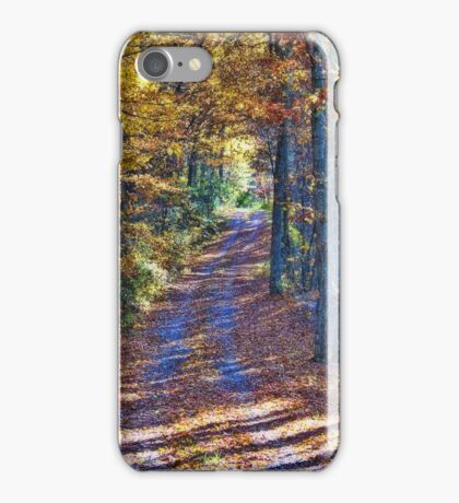 Path Into Autumn iPhone Case/Skin