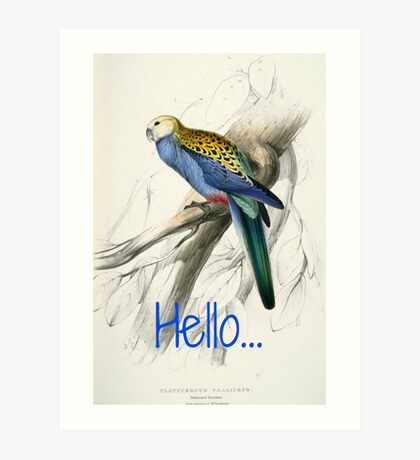 Vintage Parrot Print Art Print