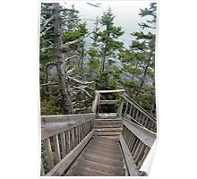 Bass Harbor Trail Poster