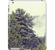 Smoky Mountains iPad Case/Skin