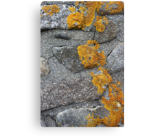 Lichen Covered Fence Post 1 Canvas Print