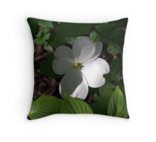 In the Shadows 1 Throw Pillow