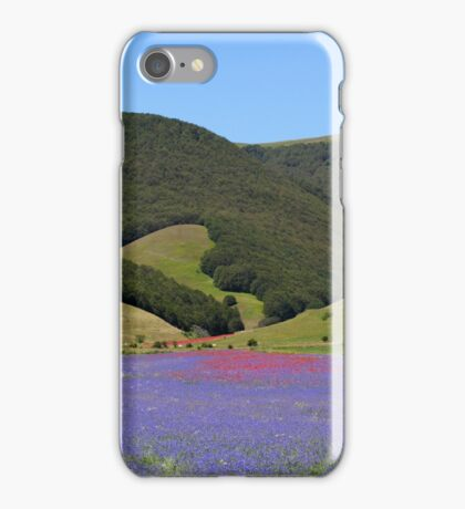 Blue colored fields with cornflowers iPhone Case/Skin