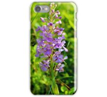 Lesser Purple Fringed Orchid iPhone Case/Skin