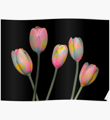 Psychedelic Tulips Poster