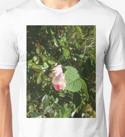 Pink Roses Unisex T-Shirt