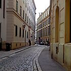 Viennese Streets by goddarb
