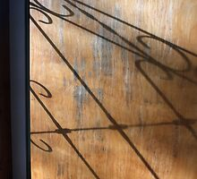 Screen Door Shadow by marybedy