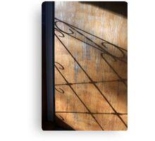 Screen Door Shadow Canvas Print