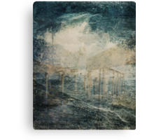 Between Order and Randomness Canvas Print
