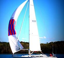 Wind in my sails by Vicki Childs