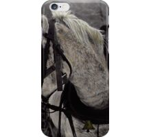 The Draft Horse iPhone Case/Skin