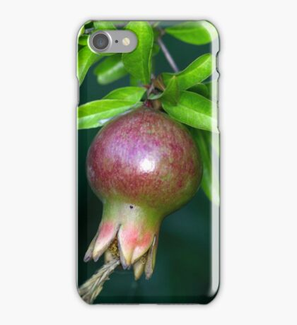 Green pomegranate fruit iPhone Case/Skin