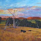 Bendemeer Pastoral by Cary McAulay