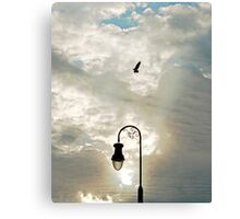 Capture in the Clouds Canvas Print