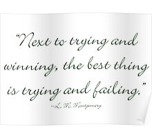 Next to trying and winning, the best thing is trying and failing Poster