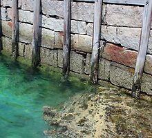 Seal Harbor Dock Pilings 2 by marybedy