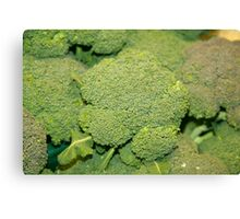 Broccoli Bag Canvas Print
