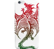 Dragon 578 iPhone Case/Skin