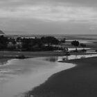 Low Tide Near Pebbly Beach by WayneG57