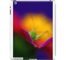 Peek a Boo      iPad Case/Skin