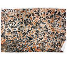 Acadia Granite 2 Poster