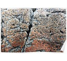 Acadia Granite 3 Poster