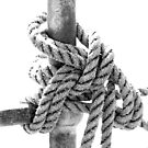 Knotted Rope II by Stephen Mitchell