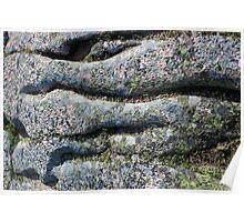 Acadia Granite 8 Poster