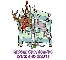 Rescue Greyhounds Rock and Roach!  Photographic Print