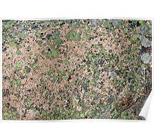 Acadia Granite 16 Poster