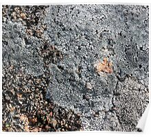 Acadia Granite 17 Poster